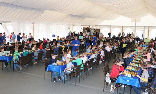272 юных шахматиста на Черной пешке в Гродно